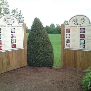 Werbeschilder aus Holz - Garden and Roses